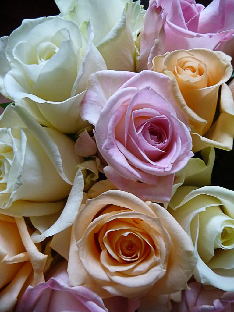 Bouquet de roses aux tons pastel, chez Éveline, Paris 14e (75)