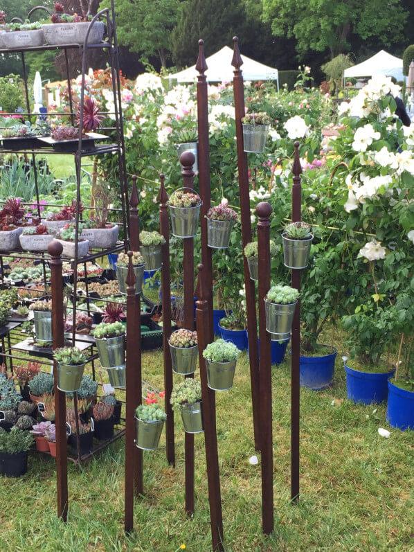 Sempervivum & Cie (Poly-Gouin Horticulture), Journées des Plantes, Domaine de Chantilly, Chantilly (60), 15 mai 2015, photo Alain Delavie