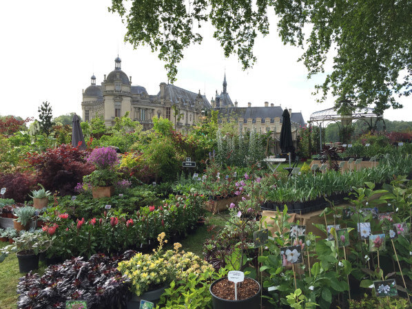 Journées des Plantes, Domaine de Chantilly, Chantilly (60), 15 mai 2015, photo Alain Delavie