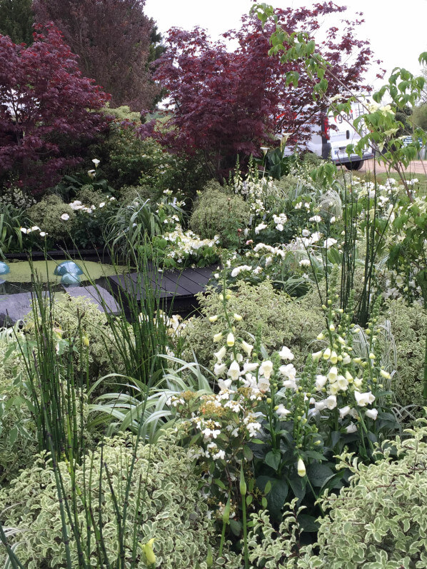Jardin blanc de Truffaut, Journées des Plantes, Domaine de Chantilly, Chantilly (60), 15 mai 2015, photo Alain Delavie