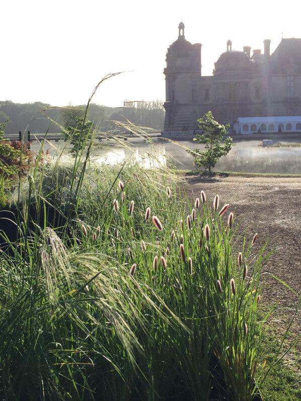 Graminées, pépinière L'Autre Jardin, Journées des Plantes, Domaine de Chantilly, Chantilly (60)