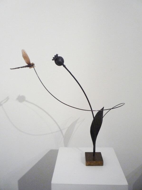 Le pavot et la libellule, Anne K Imbert