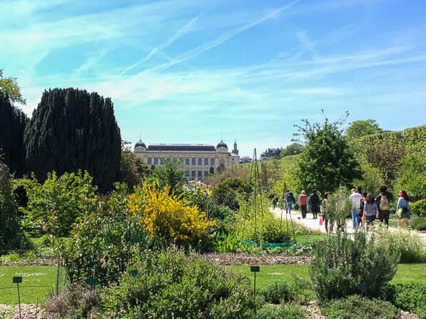 Grande perspective du Jardin des Plantes au printemps, Paris 5e (75)