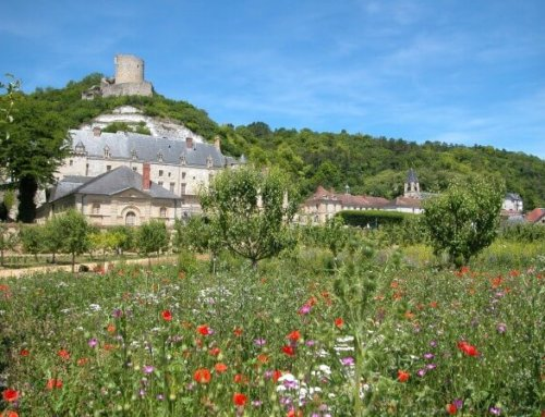 Le château de La Roche-Guyon (Val d'Oise) est ouvert à nouveau aux visiteurs