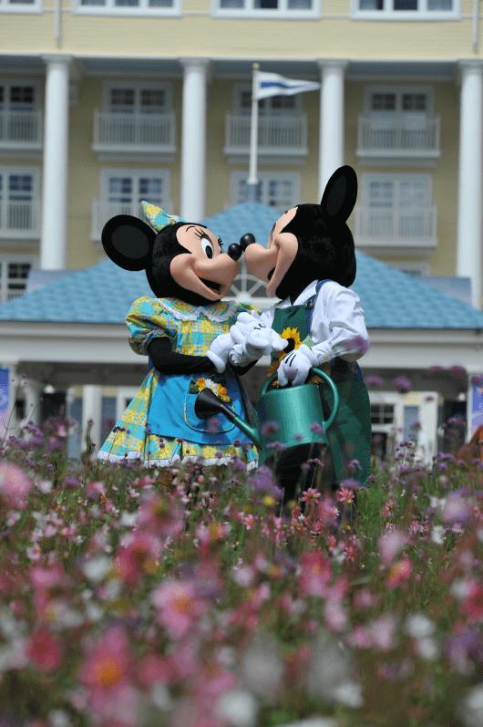 Minnie et Mickey dans le Jardin hollandais, Disneyland Paris, été, juin 2017