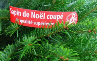 Sapin Label Rouge