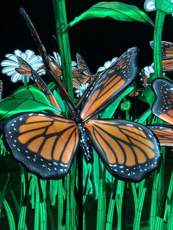 Papillons, lanternes, Espèces en voie d'illumination, promenade nocturne, lanternes, Jardin des Plantes, Paris 5e (75)