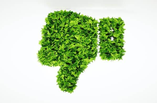 Pouce vert / Fotolia malp