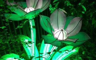 Espèces en voie d'illumination, promenade nocturne, lanternes, Jardin des Plantes, Paris 5e (75)