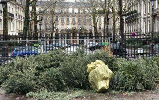 Point de collecte pour le recyclage des sapins de Noël, parc Monceau, Paris 8e (75)