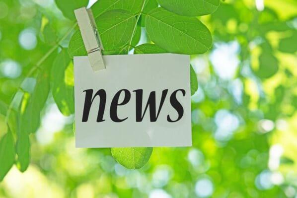 NEWS Fotolia © tamayura39