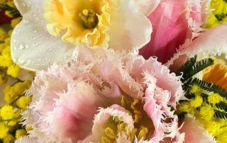 Narcisse, tulipe et mimosa, création Aoyama Flower Market, bouquet, fleurs coupées, hiver, Paris 19e (75)