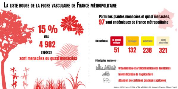Infographie, liste rouge de la flore vasculaire de la France métropolitaine