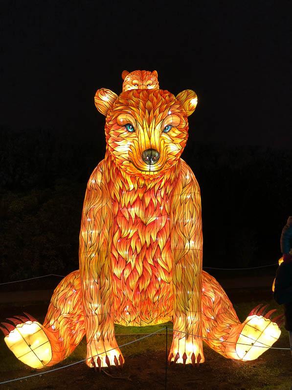 Ours, Espèces en voie d'illumination, promenade nocturne, lanternes, Jardin des Plantes, Paris 5e (75)