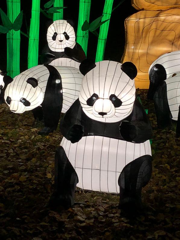 Pandas, Espèces en voie d'illumination, promenade nocturne, lanternes, Jardin des Plantes, Paris 5e (75)