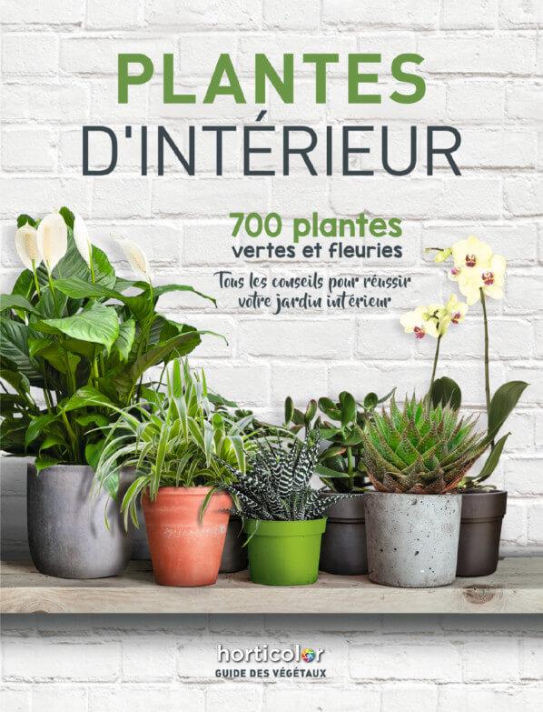 Plantes d'intérieur, 700 plantes vertes et fleuries, Horticolor