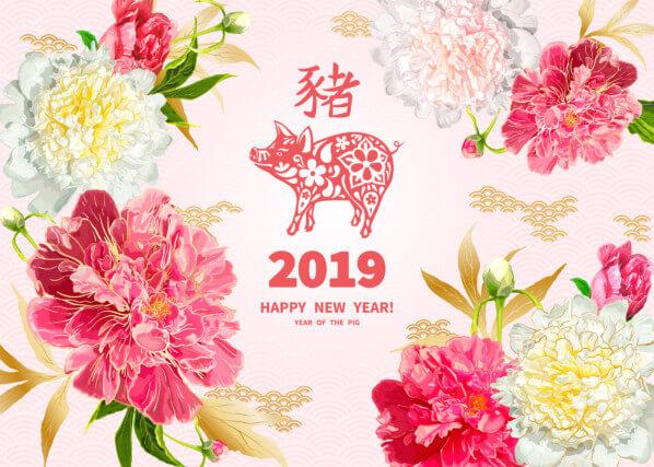 2019, année du Cochon de Terre, nouvel an chinois, photo Fotolia / ledelena