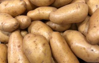 Pommes de terre La Pompadour, Salon International de l'Agriculture 2019, Paris 15e (75)