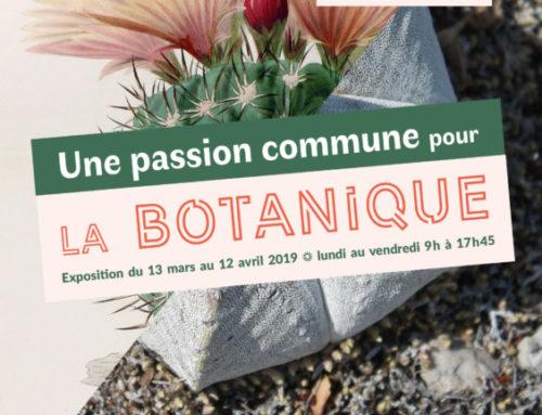 Exposition «Charles Lemaire et Édouard Maubert, une passion commune pour la botanique»