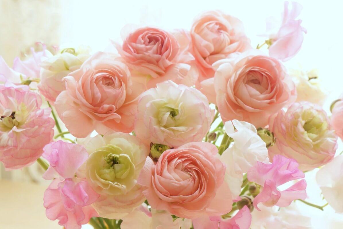 Bouquet de renoncules et de pois de senteur, photo Fotolia / Beth