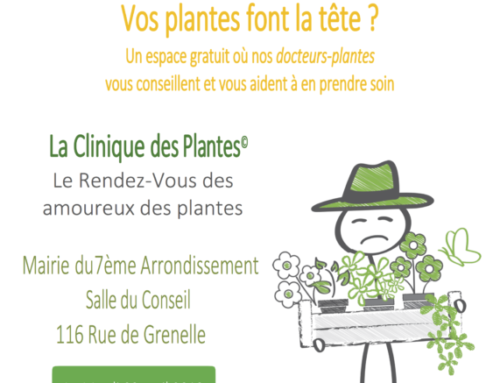 Clinique des Plantes : le jardin sans pesticides… Comment faire ?