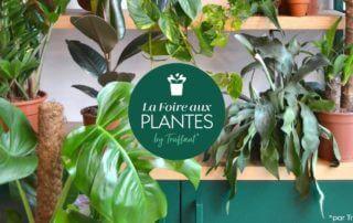 La Foire aux Plantes by Truffaut Arceuil du 10 au 12 mai 2019
