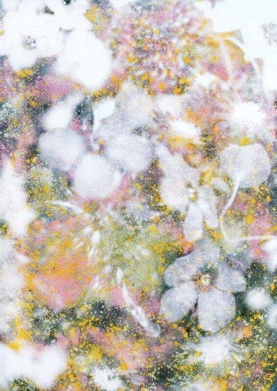 Flowers 2018_Sérigraphie à la colle et poudre colorée de super-aliments sur papier 60 x 40 cm_Roman Moriceau