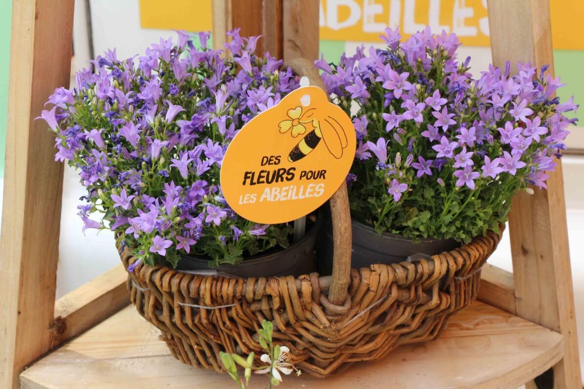 Panier de campanules, 3ème édition de la Semaine des fleurs pour les abeilles, du 14 au 23 juin 2019, Val'hor