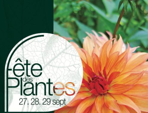Les 10 gagnants pour la Fête des Plantes automne 2019 de Saint-Jean de Beauregard