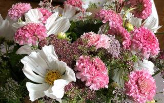 Bouquet de fleurs d'été, Cosmos, scabieuse, Gaura, carotte 'Dara', coriandre, Paris 12e (75)