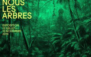 Exposition Nous les arbres, Fondation Cartier pour l'art contemporain, Paris 14e (75), juillet à novembre 2019