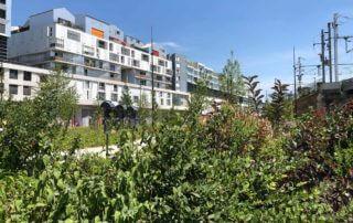 Jardin-promenade Césaria-Évoria, Paris 19e (75), 10 juillet 2019, photo Alain Delavie
