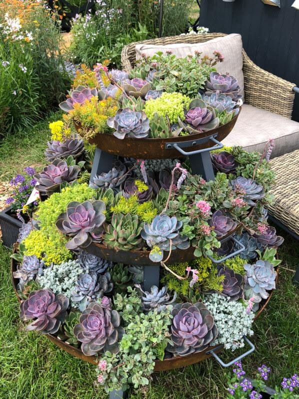 Mini jardin de plantes grasses, Hampton Court Garden Festival (UK)