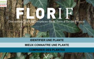 FLORIF