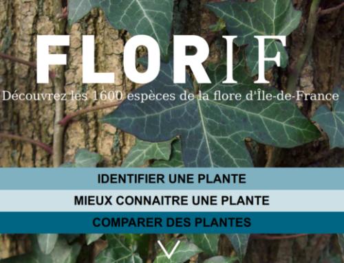 FLORIF, aide à la détermination des 1600 plantes spontanées franciliennes