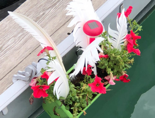 Des jardinières pour fleurir une barque