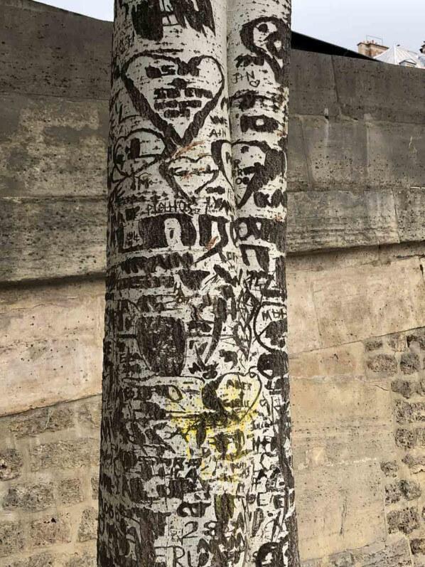 Inscriptions sur l'écorce et le tronc d'un arbre en bord de Seine, Paris (75)