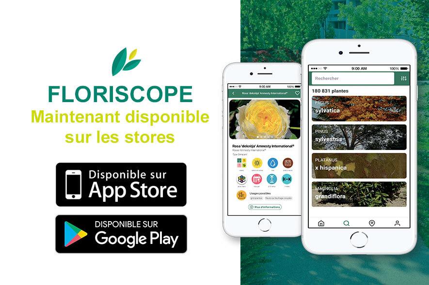 Application mobile Floriscope