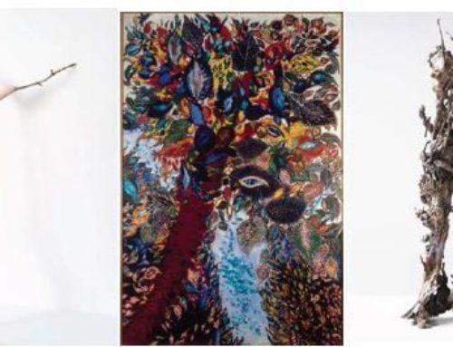 Exposition «Le rêveur de la forêt» du 27 septembre 2019 au 23 février 2020