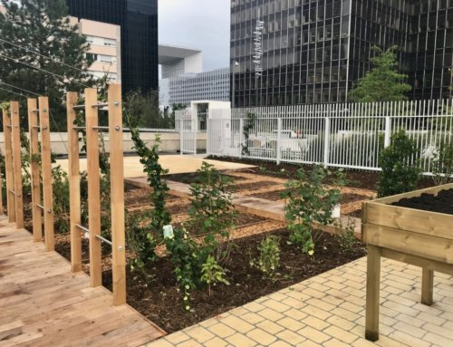 Paris La Défense inaugure son 4e jardin partagé, le Jardin Suspendu