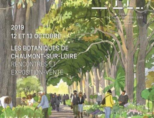 Première édition des Botaniques de Chaumont-sur-Loire les 12 et 13 octobre 2019