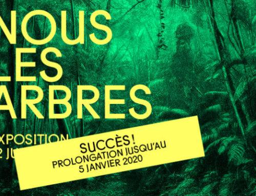 Prolongation de l'exposition «Nous les Arbres» jusqu'au 5 janvier 2020