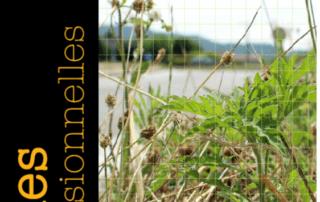 Règle professionnelle sur les bonnes pratiques pour gérer les plantes exotiques envahissantes et adventices, UNEP