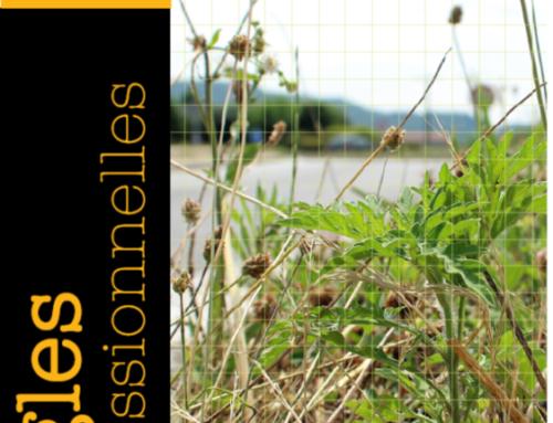 Règle professionnelle sur les bonnes pratiques pour gérer les plantes exotiques envahissantes et adventices