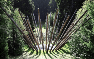Black Bamboo, Nils Udo, Fondation EDF, Paris 7e (75)