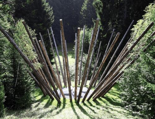 Black Bamboo, Nils-Udo s'installe à la Fondation EDF
