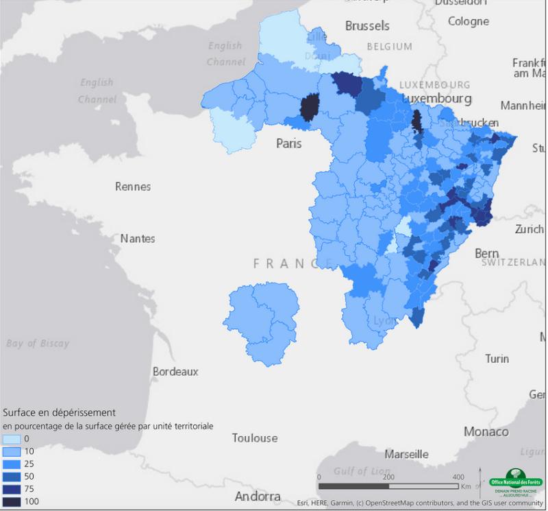 Carte des surfaces forestières touchées par la sécheresse de l'été 2019, ONF