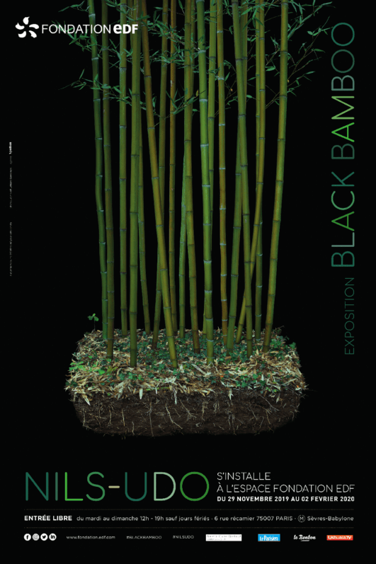 Affiche Black Bamboo, Nils Duo, Fondation Groupe EDF, Paris 7e (75)