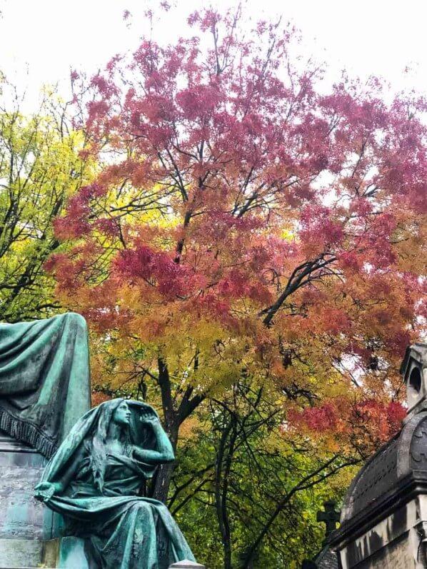 Couleurs d'automne, cimetière du Père Lachaise, Paris 20ème (75)