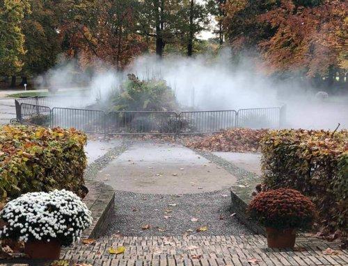 Le chemin de l'évolution du parc floral de Paris dans les brumes